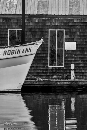 monochrome robin ann